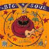 Hippy Hippy Shake - Big Soul