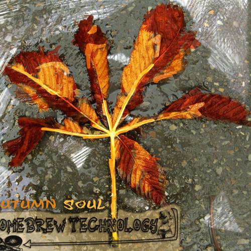 Homebrew Technology - Autumn Soul