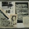 Planche  picto  11 Eve Livet - poème archive Manuel Montero