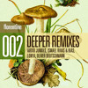 Audio Junkies - Deeper feat Mei Finegold - Ismael Rivas (aka Riva)  & Bias Factomania Remix(Sample)