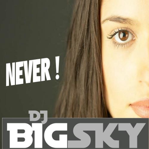 DJ BIGsky - never (DOWNLOAD free)
