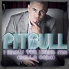 New Bailanda (Pitbull Reloaded) [DJ FAST]