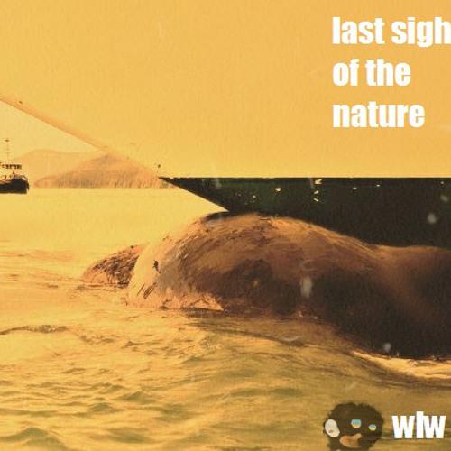 whales leave water - слишком хороший день для того чтоб быть вчерашним