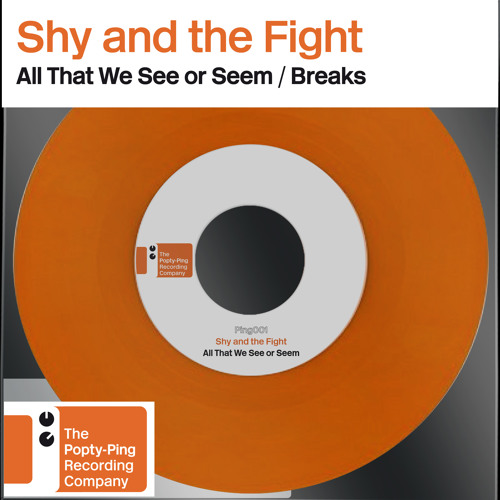 PING001 : Shy And The Fight - A : All That We See or Seem