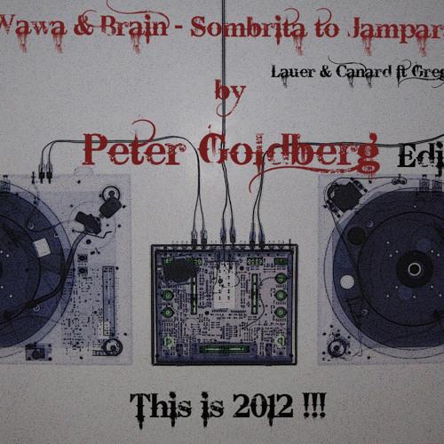Wawa & Brain- Sombrita to Jampara(Lauer & Canard ft. Greg Note remix by Peter Goldberg Edit)