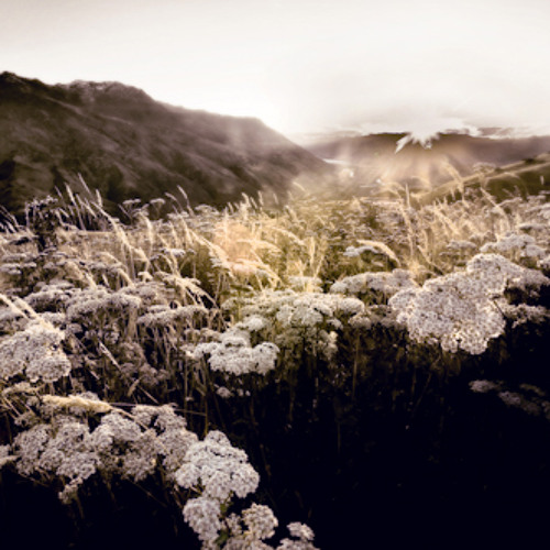 La Vallee Fleurie