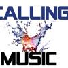 CALLING MUSIC - BEST OF PITBULL MIX 2011