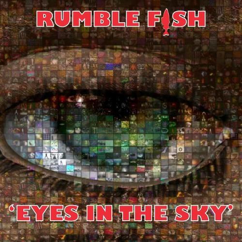 Rumblefish - 'Eyes In The Sky' - Original & remixes sampler - Functional Records.