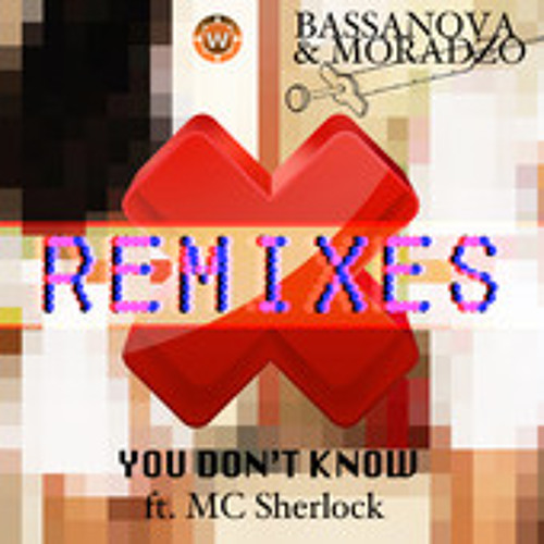 Bassanova & Moradzo ft. Mc Sherlock - You Don't Know (HouseFactory Remix)