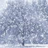 Bernd - Let it snow