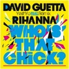 David Guetta ft Rihanna - Who's that chick (YeshYo Remix)
