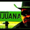 El Toro De Sinaloa - El Tiburon 2