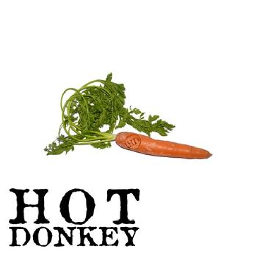 Hot Donkey - Disregard (Ali Jamieson remix)
