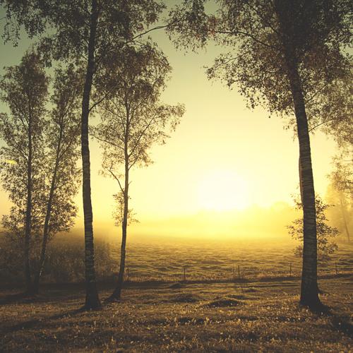 Rdei - Dawning