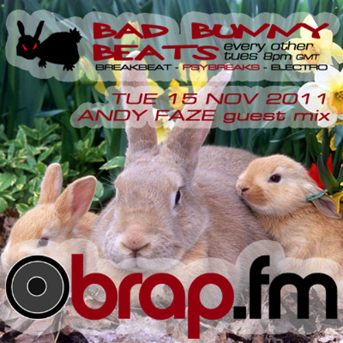 Andy Faze - Bad Bunny Beats Guest Mix on Brap.fm (Nov 2011) D/L