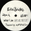 What I Am (Budd Foxx White Label Tribute Edit) - Edie Brickell & New Bohemians