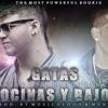 Farruko Ft Daddy Yankee - Gatas , Bocinas & Bajo ( DJ Sidrek Ft DJ Pipe Oushet Rmx Club )