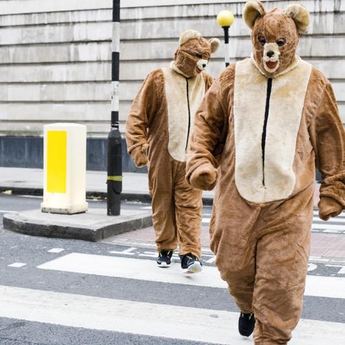 The 2 Bears - Tourettes Hero