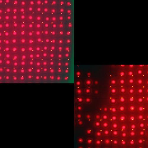 Portraits in movement - Heard (Radio Guidance remix) - Rainbow Socks