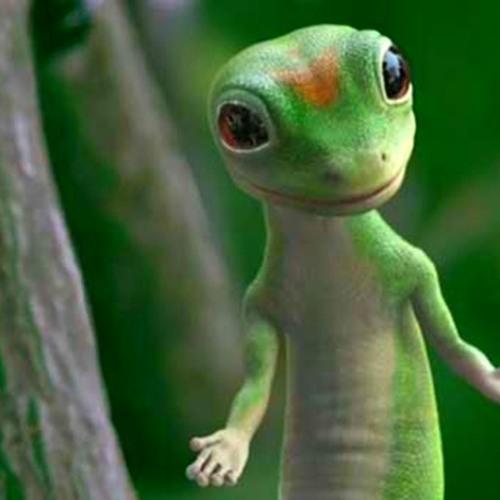 Datsik - Gecko (VIP)