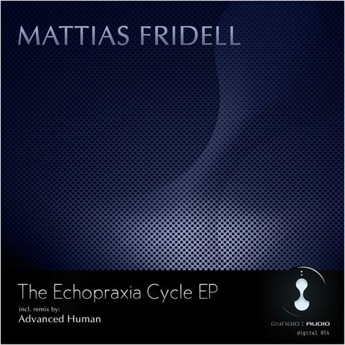 ► mattias fridell - spherical vault (advanced human remix) (gynoidd054) •