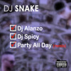 DJ SNAKE - PARTY ALL DAY ( SPICY & ALANZO REMIX )