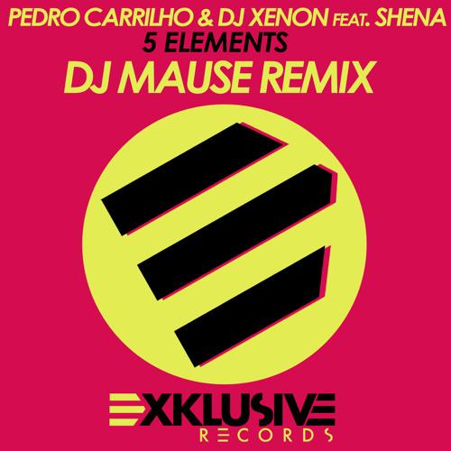 Pedro Carrilho & DJ Xenon feat. Shena - 5 Elements (Mause Remix) Soundcloud Edit