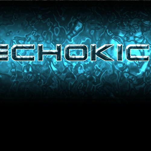 EchokickStep.