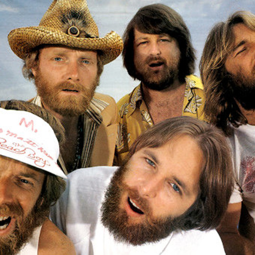 The Beach Boys - Here Comes The Night (DJ Tigerstripes Bearded Edit)