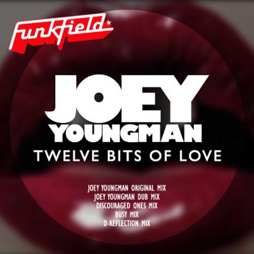 Joey Youngman - twelve bits of love ( Funkfield Recordings )