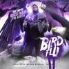 Gucci Mane- Bird Flu (DJ D1ed Remix)