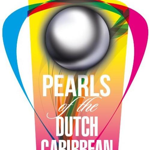 Dutch Caribbean Young Professionals