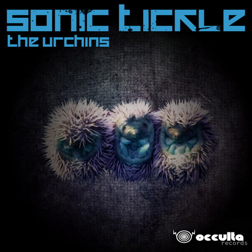 04 - Sonic Tickle - Honky Monk (Occulta Rec)