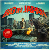 2011 - Big In Japan (Denzal Park Remix) - Martin Solveig with Dragonette Feat Idoling {Preview}