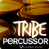 Tribe Percussor (Demo Track 1)