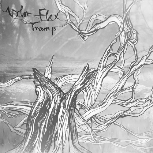 Volor Flex - Goodbye