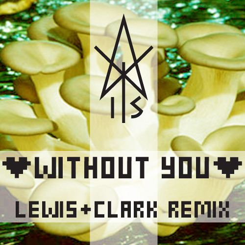 Without You (Lewis&Clark REMIX)