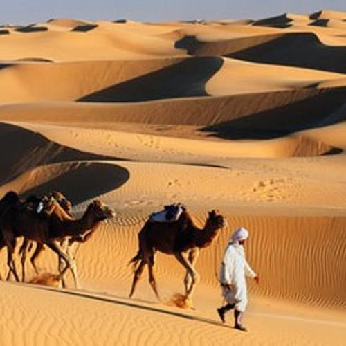 R-2B_ Sands of Desert