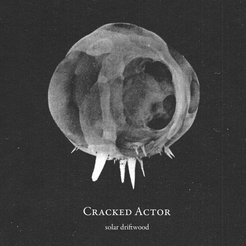 Silver Wheel by Cracked Actor