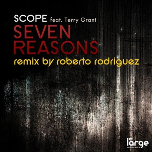 Scope feat. Terry Grant - Seven Reasons (Roberto Rodriguez Remix) (128 Snippet)