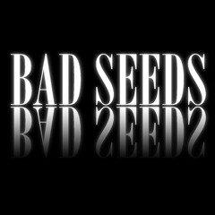The Bomb (These Sounds Fall Into My Mind) - Bad Seeds Remix