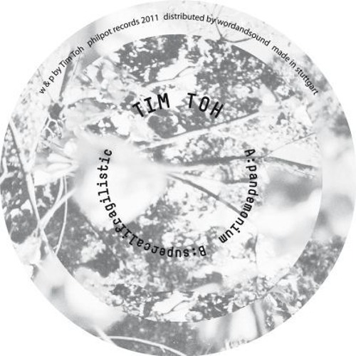 "pHp058 tim toh - pandemonium 12"" philpot promotional snippets"