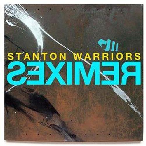 Dude Descending a Staircase (Stanton Warriors Remix)
