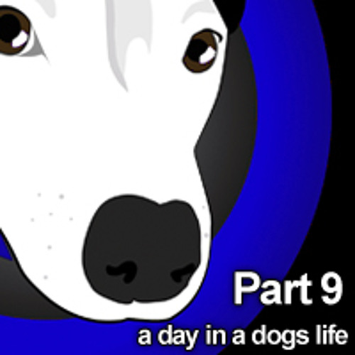 A Day In A Dogs Life - Stretford Dogs Club 2011 - Unleashed - PART 9