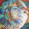 The Mosaic Project   Terri Lyne Carrington & Various Artists