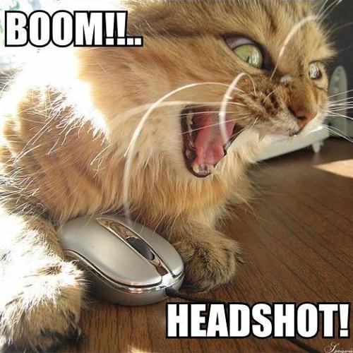 Headshot! (Electro House Mix)