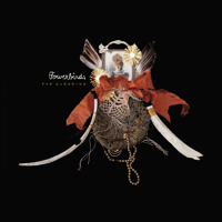 Bowerbirds Tuck the Darkness In Artwork