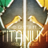 David Guetta ft. Sia - Titanium (Naiblaze Re-Rub) DOWNLOAD ON ''BUY THIS TRACK''