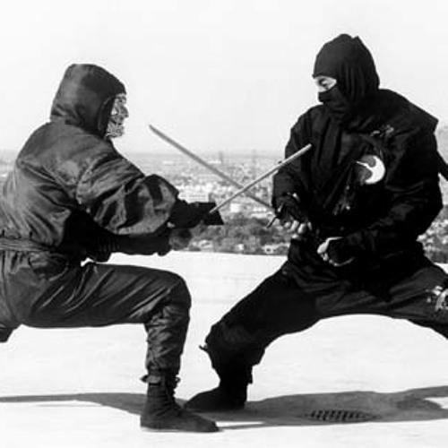 Ninja Assapsyn
