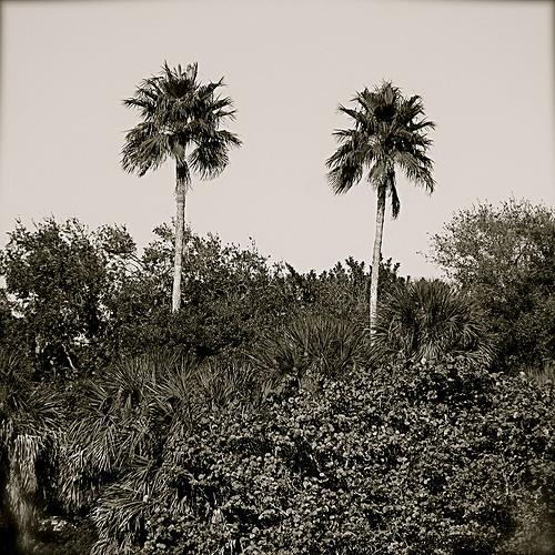Rockethead - San Domingo (Original Mix)